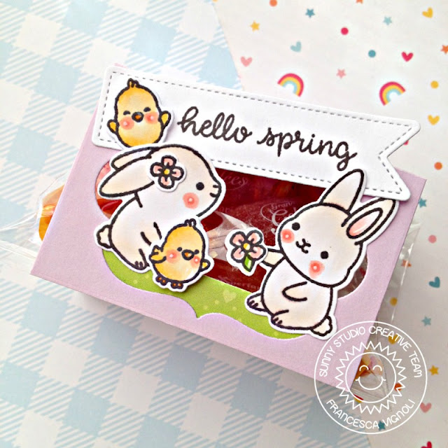 Sunny Studio Stamps: Chubby Bunny Sliding Window Dies Fancy Frames Hello Spring Card by Franci Vignoli