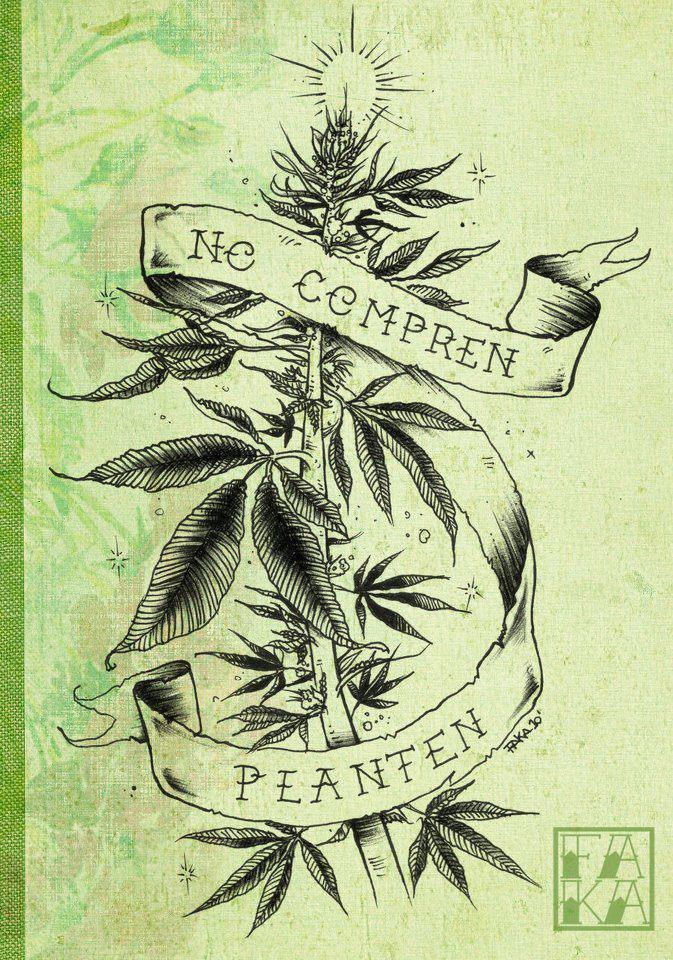 marihuana mediinal