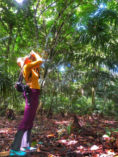 Environmental Reporter