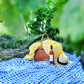 Explore Portugal with a picnic in the vineyards