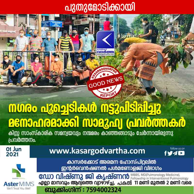 Kanhangad, Kerala, News, Kasaragod, Social workers planted flowers and beautified the city.