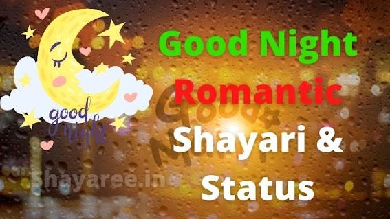Good Night Romantic Shayari & Status