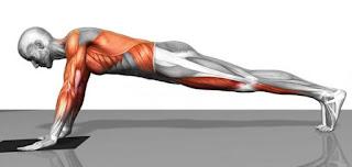 كيف تشد عضلات البطن في أسبوع