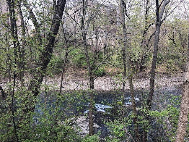 Rapids bubbling along Bettendorf's Duck Creek.