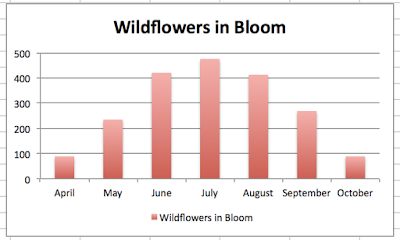 monthly wildflowers blooming