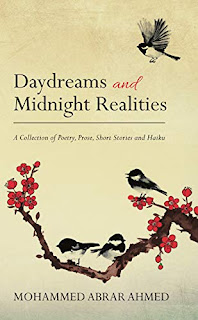 Daydreams and Midnight Realities (Author Interview)