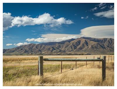 Golden Fields, Omarama, MacKenzie Basin, Otago