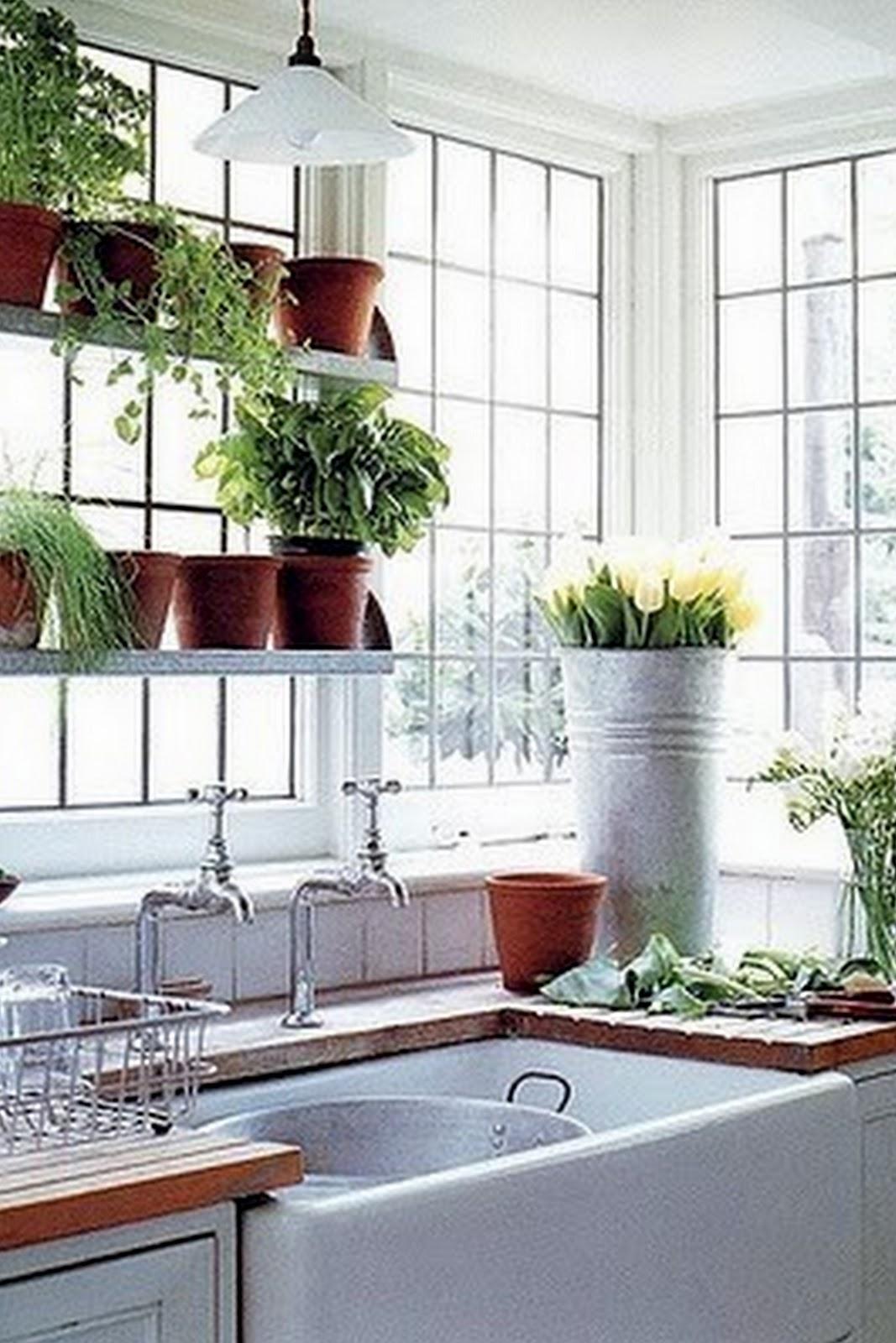 Garden Kitchen Window Hansgrohe Faucet Costco Toques E Retoques Prateleiras Na Janela Da Cozinha 1