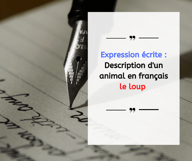 Expression écrite : Description d'un animal en français le loup