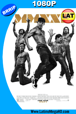 Magic Mike XXL (2015) Latino HD 1080P ()