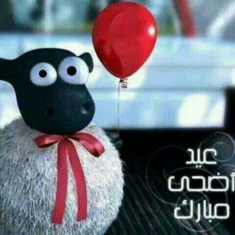 cute goat Eid al adha mubarak