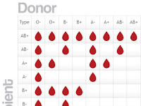 Blood Type Diagram