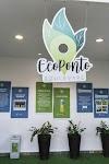 Campos tem distribuição de mudas de plantas em celebração ao Dia da Árvore