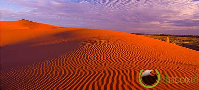 Simpson Desert (Australia)