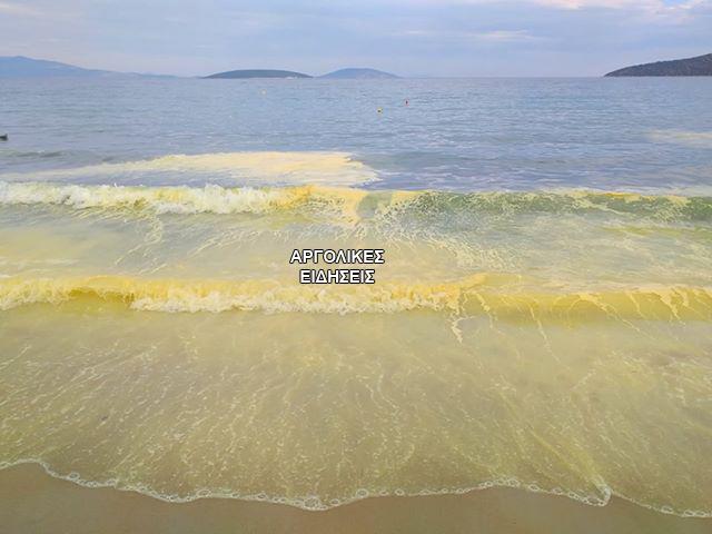 Ανοιξιάτικο φαινόμενο κιτρίνισε τη θάλασσα στο Τολό Αργολίδας (βίντεο)