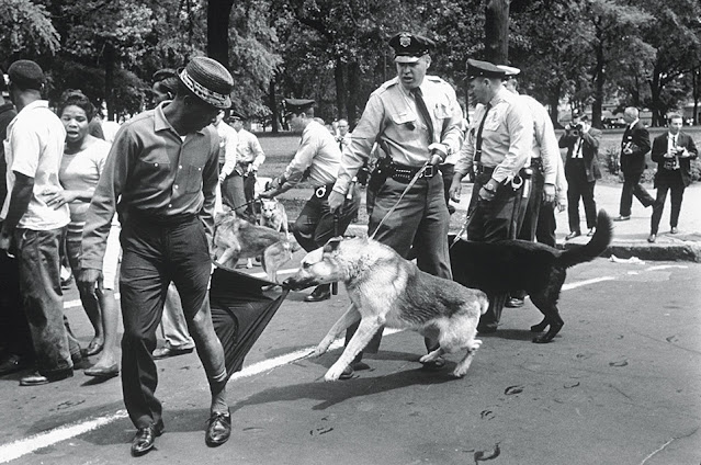 A police dog held by a white police officer tears the trouser leg of a Black man, who looks calmly over his shoulder.
