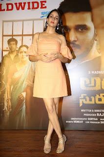 Actress Lavanya Tripathi Stills Arjun Suravaram Movie Success Meet