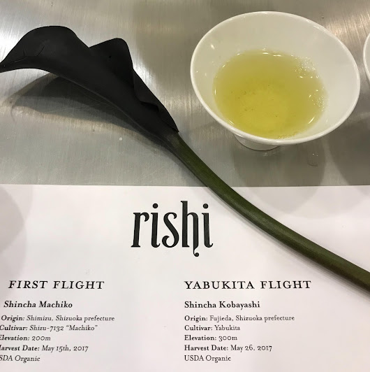 Flights of Fancy: A Green Tea Tasting