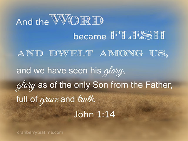 """And the Word became flesh and dwelt among us, and we have seen his glory, glory as of the only Son from the Father, full of grace and truth."" John 1:14"