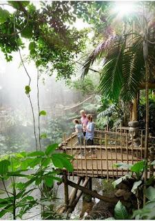 Center Parcs Het Heijderbos Erfahrungen