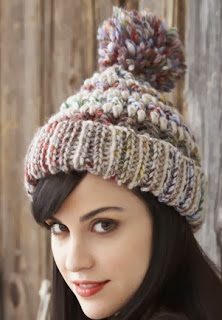 http://www.yarnspirations.com/pattern/crochet/big-stitch-hat-cowl