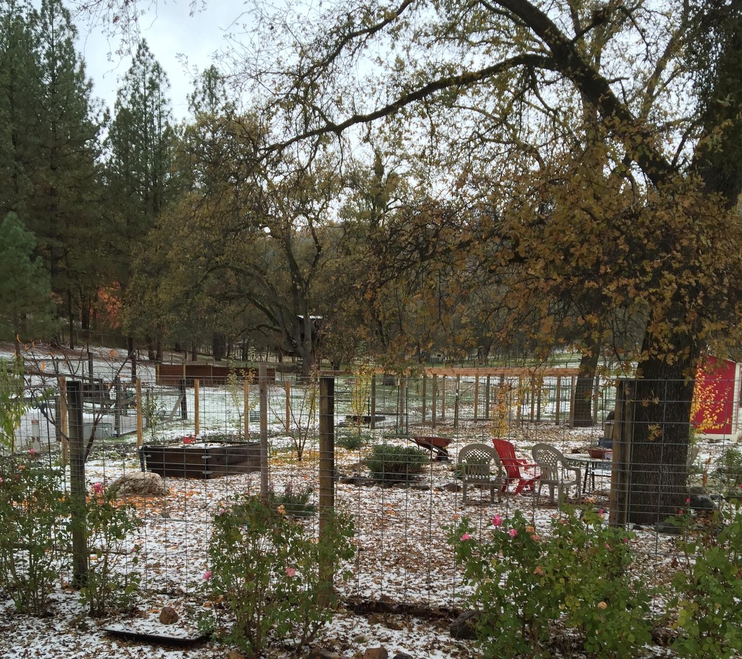 News from Oak Creek Ranch: 11/1/15 - 12/1/15