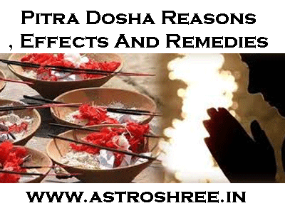 astrologer for pitru dosha analysis and solutions