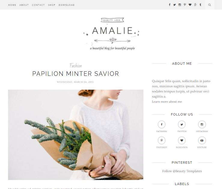 Amalie-premium-version-responsive-blogger-template-free-download