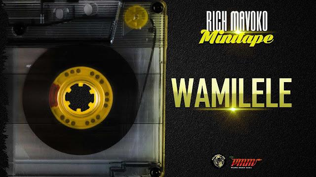 "Rich Mavoko ""Wamilele"""