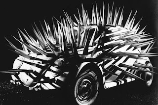 Spiky Beatle!