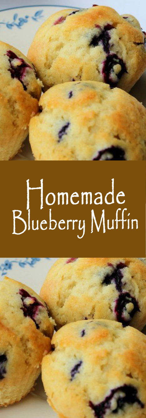 Recipe homemade blueberry muffin