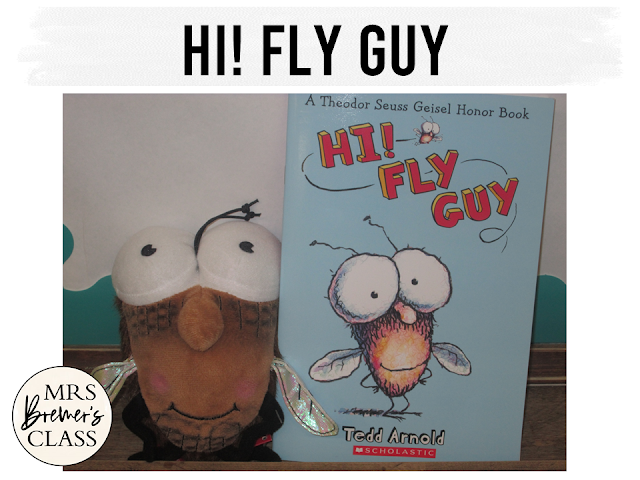 Our class LOVES Fly Guy! Here are some fun Fly Guy book study companion activities to go with the books by Tedd Arnold. Perfect for whole class guided reading, small groups, or individual study packs. Packed with lots of fun literacy ideas and standards based guided reading activities. Common Core aligned. Grades 1-2 #bookstudies #bookstudy #novelstudy #1stgrade #2ndgrade #literacy #guidedreading #flyguy