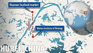 Virus Corona Berasal Dari Senjata Biologi Yang Kabur Dari The Wuhan National Bio-Safety Laboratory?