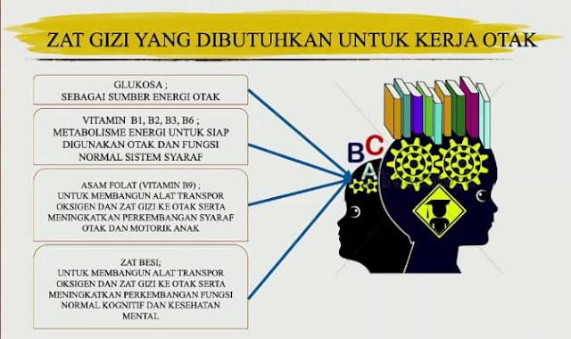 zat gizi yang dibutuhkan bagi otak