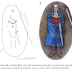 Túmulo medieval na Finlândia pertencia a um indivíduo gênero não-binário, aponta estudo