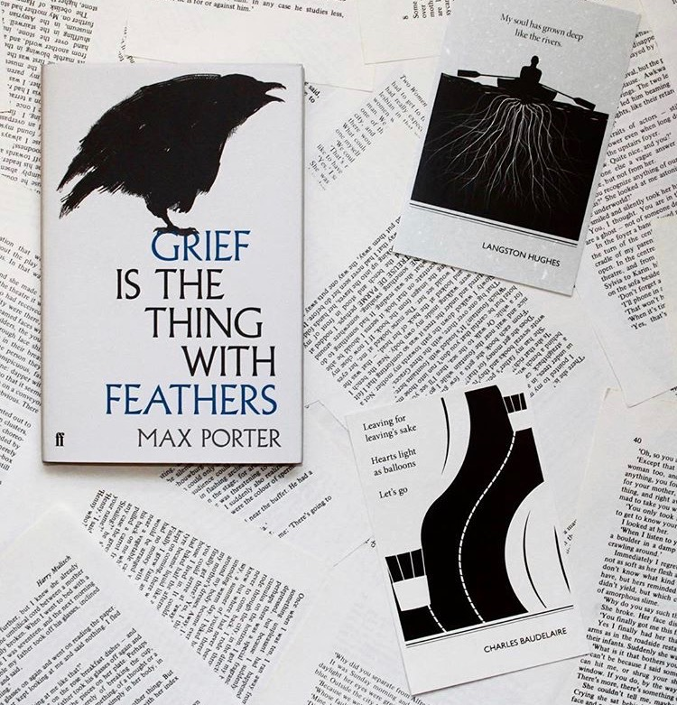 grief is the thing with feathers book