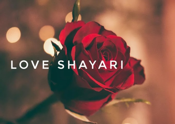 15+ Lovely shyaries that will touch your heart | love shayari for gf bf | love shayari
