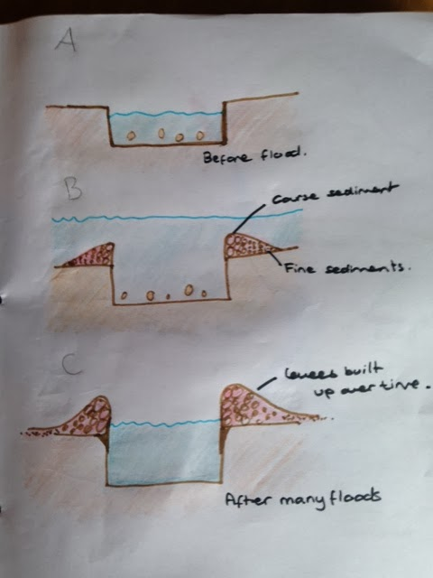 Levee Cross Section Diagram Electrical Wiring Diagrams For Outlets Gcse Geography Revision : Unit 1: Water On The Land