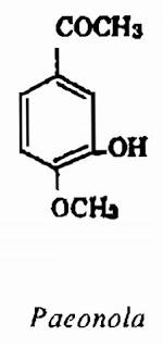 Thành phần hóa học Mẫu Đơn Bì - Paeonia suffruticosa - Nguyên liệu làm thuốc Chữa Cảm Sốt