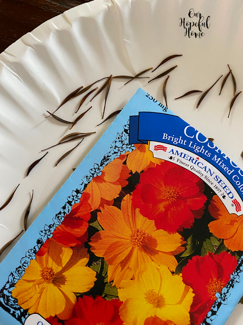 cosmos flower seed packet seeds on paper plate