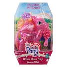MLP Secret Wish Divine Shine  G3 Pony