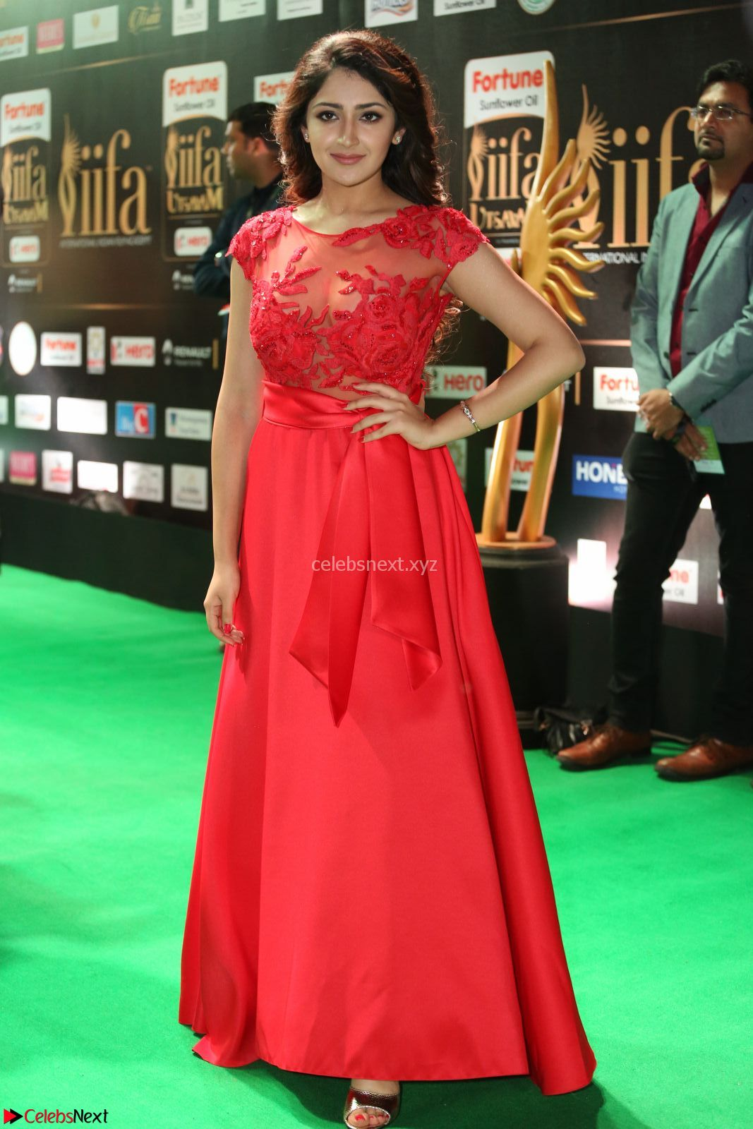 Shilpi Sharma looks Glamorous in Transparent Purple Glittering Gown at IIFA Utsavam Awards 27th March 2017 CelebsNext Exclusive