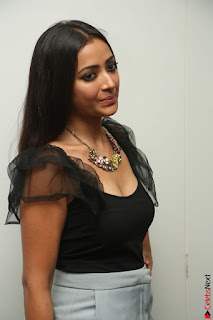 Swetha Basu in a Black Sleeveless Top Long Skirt at Mixture Potlam Movie Audio Launch 080.JPG