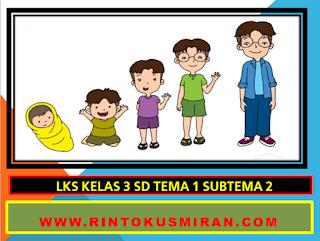 LKS 2 KELAS 3 SD TEMA 1 SUBTEMA 2