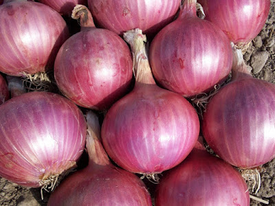 """<alt=""""Red Onions image"""">"""