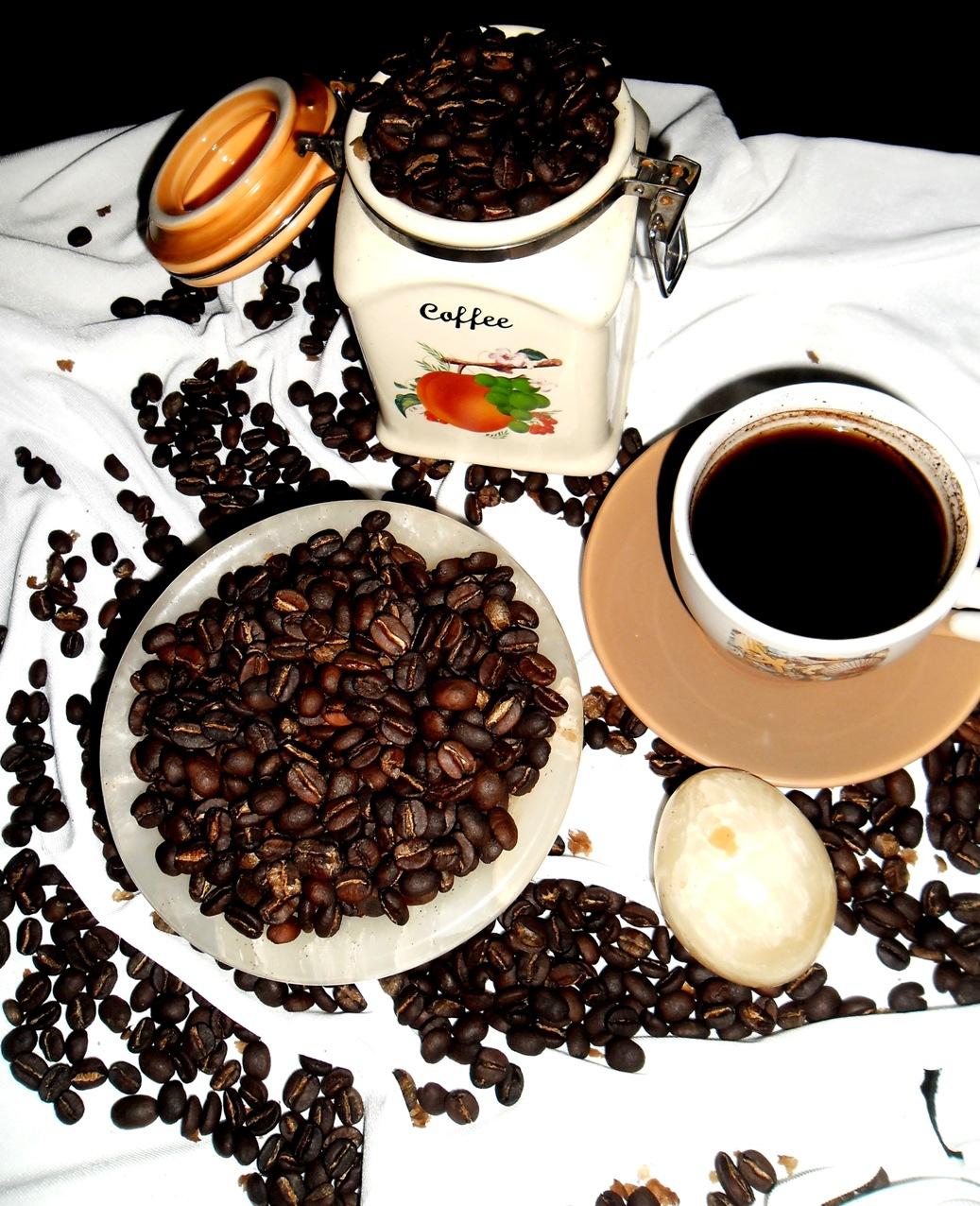 Drinking Kopi Luwak 'poop coffee' in Indonesia - Matador ...  Kopi Luwak Coffee Plantations