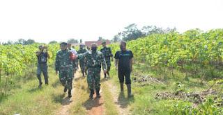 Danrem 063 Tinjau Tanah Aset TNI Yang Akan Dimanfaatkan Untuk Program Ketahanan Pangan