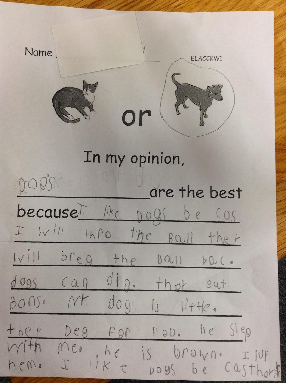 Dr Clements Kindergarten Opinion Writing In Kindergarten