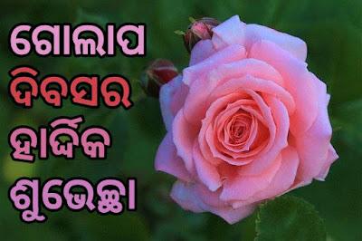 Happy rose day odia image