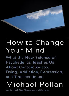 How to Change Your Mind- What the New Science of Psychedelics Teaches Us About Consciousness